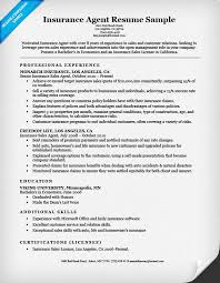 Sample Insurance Agent Resume Objective Sales