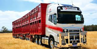 Byrne Trailers   Trailers For Sale Australia Wide Cattle Transport Truck In Morocco Editorial Stock Image Of 100lt 20 Livestock Tractor Trailer Bateson Trailers 2004 Volvo Fm9 Rigid 6x4 Sheep Goat For Sale Trucks For Hire Willow Creek Ranch Live Atlas Plowman Containers Brothers 35 X 18 Cattle Trailers Sale Junk Mail Boxes Used P D Commercials Jm Welding Tamworth Australian Crate Specialists Versatility Makes Heavy Duty Hino The Right Choice Auto Moto Cannon Manufacturers Makers 1970 M35a2 Turbo Feed Truck Sale