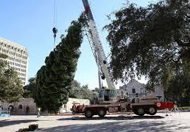 The HEB Sponsored Alamo Plaza Christmas Tree Was Delivered On Tuesday Nov 15
