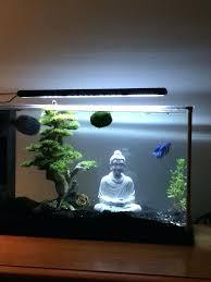Marvelous Petco Aquarium Decor 5 Gallon Spec V With A And Decor