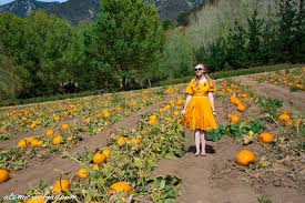 Oak Glen Pumpkin Patch Address by Riley U0027s Farm Atomic Redhead