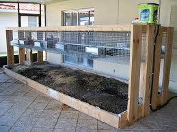 290 Best Meat Rabbits Images On Pinterest | Meat Rabbits, Raising ... Learn How To Build A Rabbit Hutch With Easy Follow Itructions Plans For Building Cages Hutches Other Housing Down On 152 Best Rabbits Images Pinterest Meat Rabbits Rabbit And 106 Barn 341 Bunnies Pet House Our Outdoor Housing Story Habitats Tails Hutch Hutches At Cage Source Best 25 Shed Ideas Bunny Sheds Shed Amazoncom Petsfit 425 X 30 46 Inches Cages Exterior Cstruction Nearly Complete Resultado De Imagem Para Plans Row Barn Planos Celeiro