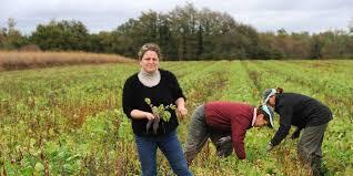 chambre agriculture des landes landes bio et productif c est possible sud ouest fr