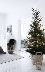 Krinner Christmas Tree Genie Xxl Uk by Best Christmas Tree Stand 3 Photo Christmas Trees Pinterest