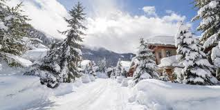 100 Whistler Tree House Best Mountain Towns For Winter Via