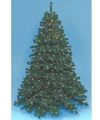 Barcana Christmas Trees by For All Seasons Gift Shop Jacqueline Kent