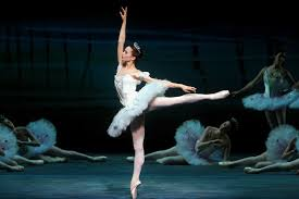 the history of the ballet body from anna pavlova to misty
