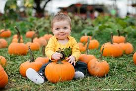 Pumpkin Patch Glendale Co by Pumpkin Patch Pumpkin Love Pinterest Halloween Carnival