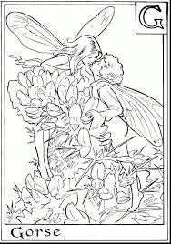 Unicorn Coloring Pages For Adults New Fairy And