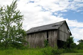 Old Barn Missouri I Have To Admit, I Love The Look Of Barns. They ... Hand Crafted Custom Builtin Bookcases And Old Barn Wood Ceiling As Countys Old Barns Chimneys Vanish So Do Birds That Do It Again February Projects Barn Door Trying To Figure Out What I Want With It Restoration What Would You With An Open The Queso At High Point Farms Exterior Rustic Bride Yourself Birch Plywood Was Used To This Limited Budget Renovation Of 34 Best Tin Projects Images On Pinterest 269 Barns Country