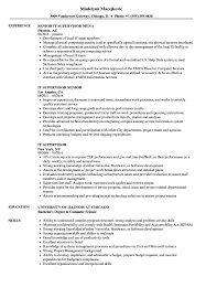 Download IT Supervisor Resume Sample As Image File