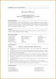 Summary For Resume Examples Sample Professional Example Achievable Drawing Profile And Get En