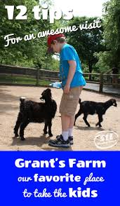 Grants Farm St Louis Halloween by Grant U0027s Farm 12 Tips For An Awesome Visit