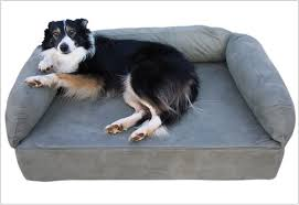 Stuft Dog Bed by Serta Dog Bed Buy Serta Super Pillowtop Orthopedic Pet Bed Blue