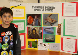 Funny Science Fair Projects Things I Poked With A Stick Elementary School