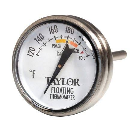 Taylor Stainless Steel Floating Thermometer