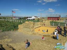 Pumpkin Patch Utah by Cross E Ranch Fall Festival Utah U0027s Adventure Family