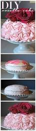 Pampered Chef Easy Accent Decorator Cupcakes by 403 Best Cake U0026 Cookie Decorating Images On Pinterest Cookie