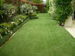 Best Of Fake Grass Backyard | Architecture-Nice Backyard Putting Green Artificial Turf Kits Diy Cost Lawrahetcom Austin Grass Synthetic Texas Custom Best 25 Grass For Dogs Ideas On Pinterest Fake Designs Size Low Maintenance With Artificial Welcome To My Garden Why Its Gaing Popularity Of Seattle Bellevue Lawn Installation Springville Virginia Archives Arizona Living Landscape Design Images On Turf Irvine We Are Dicated