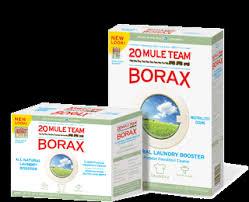 moms AWARE Borax Friend or Foe