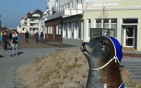 urlaub mit hund ferienwohnung ferienhaus auf norderney