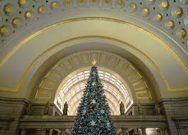 Christmas Tree Permit Colorado Springs 2014 by The 18 Best Places To Take Pictures In Washington Dc Photo Guide