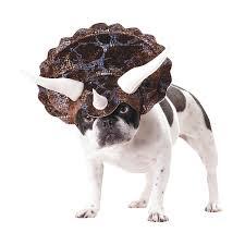 Spirit Halloween Denton Tx by Animal Planet Triceratops Dog Costume Dog Animal And Fur Babies