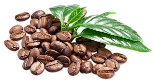 Coffee Beans PNG Transparent Images Clipart Free Download