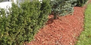 Garden Mulch How To