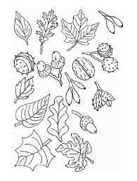 Trees And Leaves Coloring Pages 15
