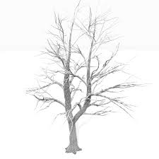 Bare Tree Coloring Pages Kids