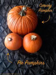 Varieties Of Pie Pumpkins by Pumpkin Soup Soup Bowl Recipes
