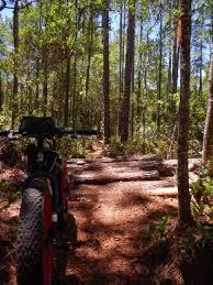Florida s Natural Wonders – Florida s Best Hiking Mountain Biking