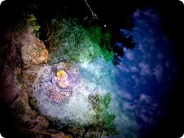 Sink Florida Sink Bass Tab by 12 Best Leon Sinks Geological Site Images On Pinterest Leon