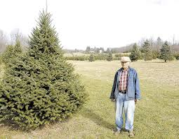 Menards Christmas Tree Skirts by Gus Ruetenik Knows A Lot About Christmas Trees News Times
