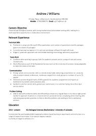 Example Skill Based CV