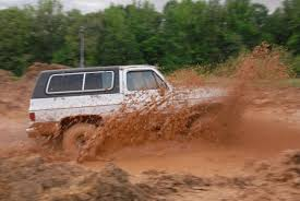 Bog Madness: Mud To Splash Friday | County Life | Yourgv.com