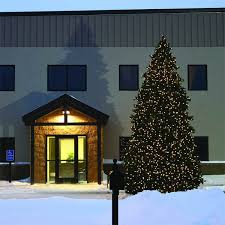 20 Ft Artificial Christmas Tree Image
