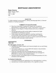 Download Now Underwriter Resume Objective Mortgage Loan Sample Insurance