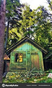 100 House In Forest Wooden Stock Photo Oreacretivemedia 184039486