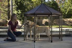 Top Dog Kennels For Responsible Pet Owners And Features To Consider Amazoncom Solution Series Double Door Folding Metal Dog Crate For Five Of The Best Cars And Trucks To Buy If You Want Run With Crates Trucks General Chat Gun Forum 2013 Free Standing Kennel Boxes Specialty Items Hpi Custom Made For Toyota Sienna Cool Pinterest Houses Leonard Buildings Truck Accsories Condos Hunting Rig Picturestrucks 4wheelers Etc Biggahoundsmencom Gunner Kennels The 500 Worth Every Penny Gearjunkie Get My Point Llc Honeycomb Box Dog Box Dogs Dogs Living Birddogs How We Roll Ivoiregion