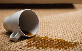 Remove Blood Stain From Carpet by Washing Up Liquid Better Than Many Carpet Stain Removers Which