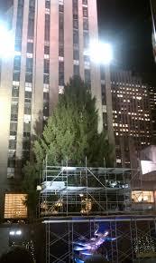 Christmas Tree Rockefeller Center Live Cam by Rockefeller Christmas Tree U2013 The Little Things