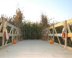 Southern Ohio Pumpkin Patches by Find Pick Your Own Pumpkin Patches In Ohio Corn Mazes And
