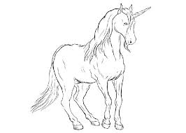 Detailed Unicorn Coloring Pages Fluffle Puff Flowers Pdf Post Pink Fluffy Unicorns Dancing On Rainbows