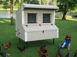 Chicken Coop Kit For 6 Chickens 6 Eggstreme Chicken Coops 6 27 X 5 ... Backyard Chicken Coop Size Blueprints Salmonella Lawrahetcom Unique Kit Architecturenice Backyards Wonderful 32 Stupendous How To Build A Modern Farmer Kits Small 1 Coops Tractors Amazoncom Trixie Pet Products With View 72 X Formex Snap Lock Large Hen Plastic Kitsegg Incubator Reviews Easy Way To With And Runs Interior Chicken Coop Garden Plans 7 Here A Tavern Style