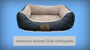 orthopedic dog bed top 8 best orthopedic dog beds youtube