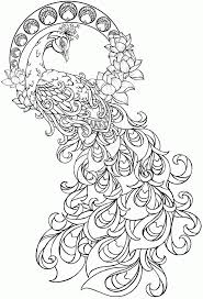 Lovely Peacock Coloring Page 26 About Remodel Download Pages With