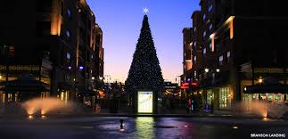 Flagpole Christmas Tree Plans by Christmas Trees In Branson Explorebranson Com Official Site