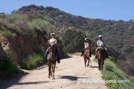 Best Pumpkin Patch In San Fernando Valley by Best Places For Horseback Riding In Los Angeles And Orange County